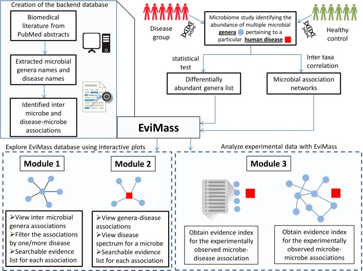 """EviMass"": A Literature Evidence-Based Miner for Human Microbial Associations."